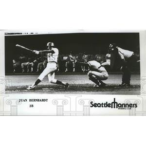 1977 Press Photo Seattle Mariners baseball player, Juan Bernhardt - sps10301