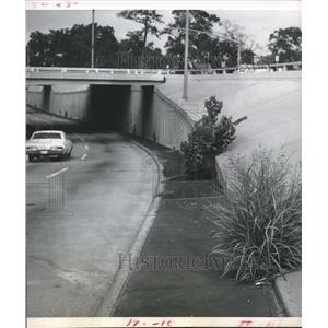 1970 Press Photo Allen Parkway with giant weeks, Freeways-Houston - hca05436