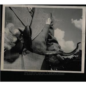 1949 Press Photo Sea lamprey Lake Michigan trout scant - RRW58415