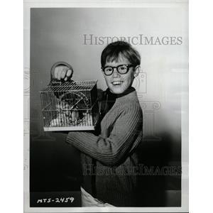 1964 Press Photo Barry Livingston My Three Sons TV Show - RRW14639