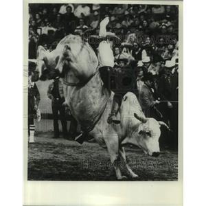 1980 Press Photo Rodeo Bull Riding - abna45985