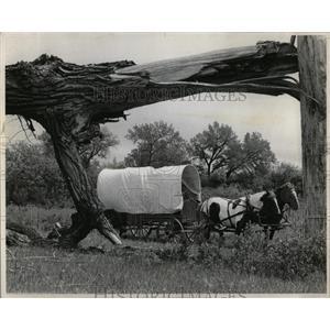 1976 Press Photo Dakota Wagon Train Adventures Wyoming - RRW66495