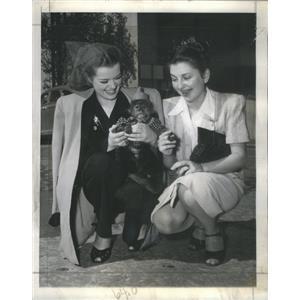 1945 Press Photo Janis Paige Joan Loring Actresses Monkey - RSC95985