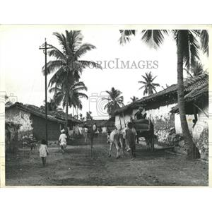 Indian Village People - RRX83689