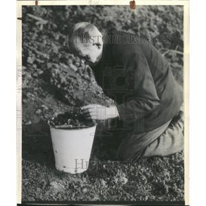 1945 Press Photo Berlin Clinder dump Coal Hnad Knee Men - RRX88863