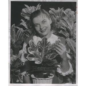 1954 Press Photo Pat Robbins American Film Television Actress Singer Chicago