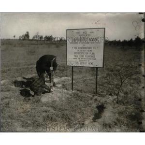 1931 Press Photo Higgins Lake Forest Reforestation - RRX44103