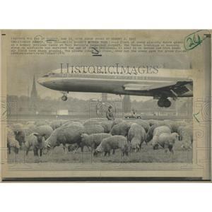 1971`19 Press Photo German Jetliner - RRY49759