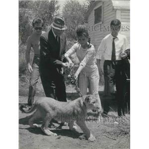 1962 Press Photo English actress Becky Lane and a lion cub - KSB03199