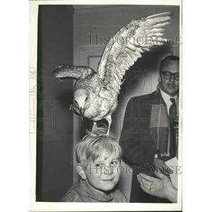 1958 Press Photo Ian McLaine ,9, & a seagull