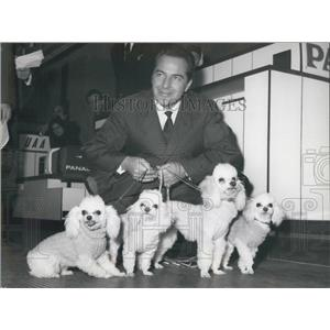 1963 Press Photo Actor Rossano Erazzi With His French Poodles - KSB05919