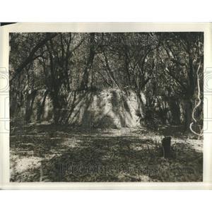 1930 Press Photo Ruins of Spanish Mission Altama - RRR86635