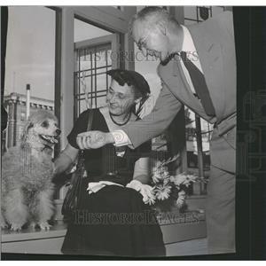 1952 Press Photo Otto Karl Bach Bichonne french poodle - RRT51705
