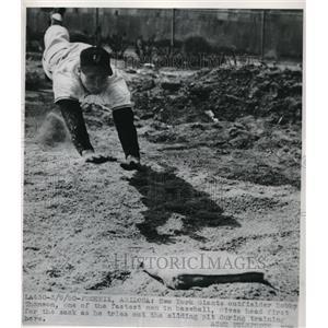 1950 Press Photo Bobby Thomson Outfielder Giants Sliding Pit Spring Training MLB