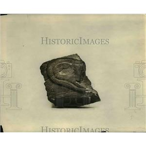 1922 Press Photo Triassir shoe sole