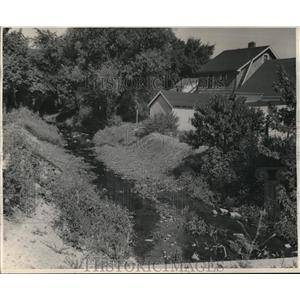 1944 Press Photo Big Creek running thru back yds - cva82209