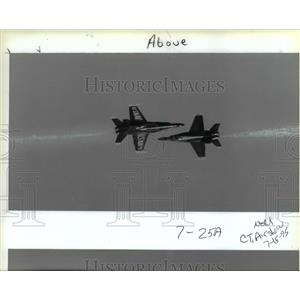 1995 Press Photo Portland Rose Festival Airshow - orb36135