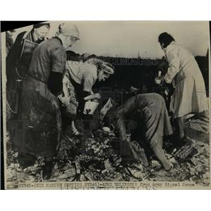 1948 Press Photo Seeking for Food  - nee92274