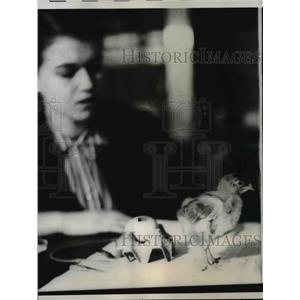 1958 Press Photo Mira Pavlovio Research Associate in Zoology at Yale with chick