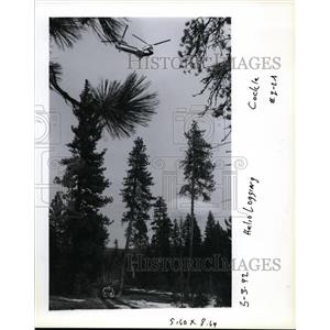 1992 Press Photo Boeing Vertol 107 hovers over the Wallowa-Whitman Nat'l Forest