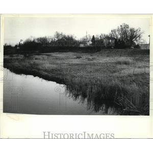 1980 Press Photo The Onion River near Waldo, where marsh grass protects the bank