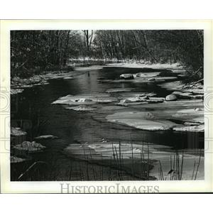 1981 Press Photo The Little Wolf River in Waupaca County, Wisconsin - mja37864