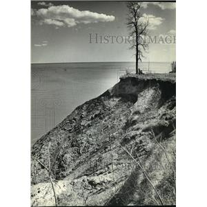 1984 Press Photo couple sitting under tree on eroding bluff near Port Washington