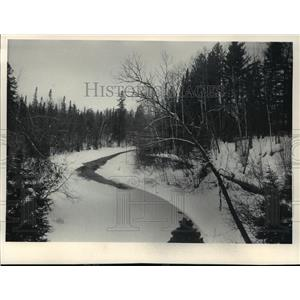 1984 Press Photo This photo shows an upper stretch of the Bois Brule River