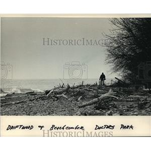 1986 Press Photo Driftwood on the beach at Doctors Park, Lake Michigan