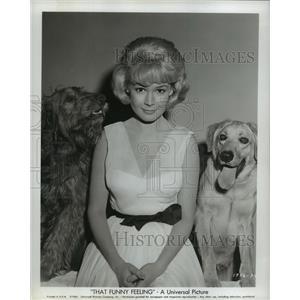 1965 Press Photo That Funny Feeling from Universal stars Sandra Dee - lfx03149